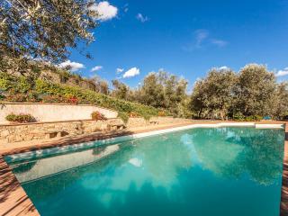 Villa Margarita, Garden Apartment with lovely Pool - Castiglion Fiorentino vacation rentals