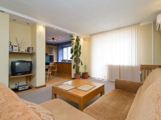 1-bedroom apartment Shota Rustaveli 25 - Kiev vacation rentals