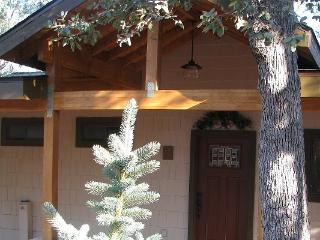 Cool Pines Here! Enjoy Our Nature Trail - Pine vacation rentals