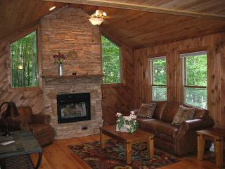 Beech Tree House - Beech Mountain vacation rentals
