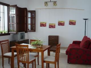 [54] Lovely apartment 1min walk to the Mosque - Cordoba vacation rentals