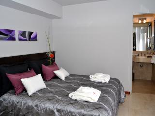 Executive con Jacuzzi Triple - Cordoba vacation rentals