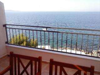 Apartments Slavinka (4+0) - Island Hvar vacation rentals