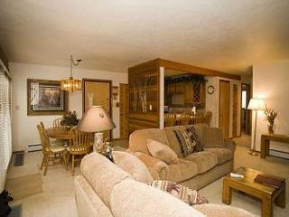 2 Bedroom Unit Near The National Forest. Clubhouse Near By And Cabin Décor. - Silverthorne vacation rentals