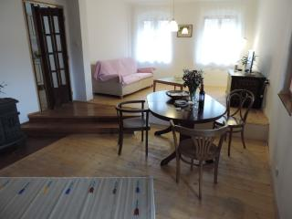 Private Apartment in Historic Krumlov - Cesky Krumlov vacation rentals