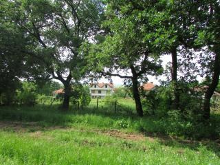 Rural Bulgarian house - Burgas vacation rentals
