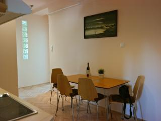 Renovated apartment for rent in downtown Szeged - Szeged vacation rentals