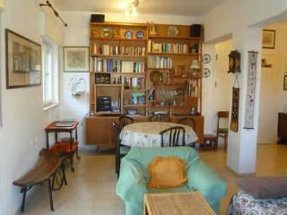 charming 1 bedroom apartment - Jerusalem vacation rentals