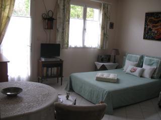 Ma Campagne en fleurs - La Celle-Saint-Cyr vacation rentals