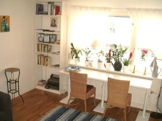 2 rooms apartment SOFO Södermalm - Stockholm vacation rentals