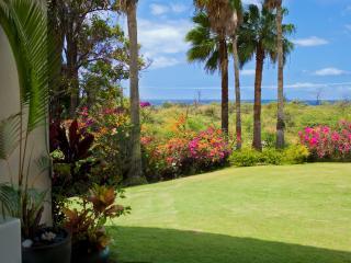 Keawakapu Ocean View, renovated green 2BR 2B - Kihei vacation rentals
