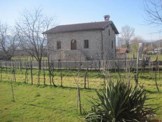 IL BOTTACCIO RUSTICO IN PODERE - Villafranca in Lunigiana vacation rentals