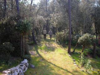 Fond de Nige - Saint-Georges d'Oleron vacation rentals
