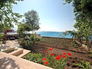 PRIVATE BEACH is YOURS / Bodrum - Bodrum vacation rentals
