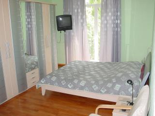 Studio on Bulvar Shevchenko 10 - Kiev vacation rentals