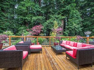 Discover the magic of a Redwood Forest right in your own backyard! - Arcata vacation rentals