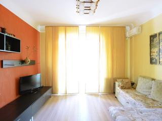 1-bedroom apartment Basseinaya 23 - Kiev vacation rentals