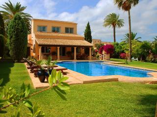 Privately owned villa,2000m2 plot,aircon/pool/wifi - Denia vacation rentals