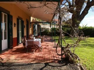 Quinta das Malvas - Rosemary - Funchal vacation rentals
