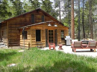 Fawn Creek Cottage - Allenspark vacation rentals