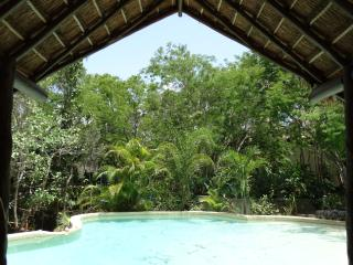 Room Marina 2 pers/Pool and Cenote - Chemuyil vacation rentals