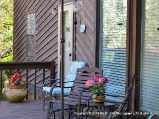 Quaint Studio Flat on Slight Hill on Cul-de-Sac - Fayetteville vacation rentals