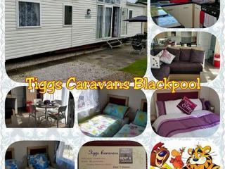 Villa Haven Marton Mere Blackpool - Blackpool vacation rentals