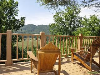 Hill Top Hideaway- Rustic, Secluded, Amazing Mountain Views, Pet Friendly - Blairsville vacation rentals