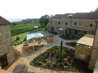 CASTEL BRUNELLO - gorgeous apartments & pool - Montalcino vacation rentals