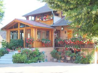 Chambres d'hôtes Danièle et Hervé Soultzbach bains - Soultzbach-les-Bains vacation rentals