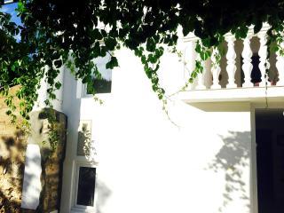 Dalmatian Villa Mika - Island Ugljan vacation rentals