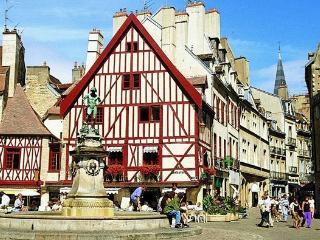 Rés.Le Courtois 2/8 parking Darcy Centre Gare-vill - Dijon vacation rentals