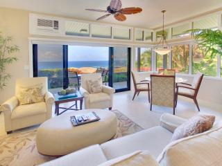 Luxurious Platinum Ocean View Ridge/Discount Golf - Kapalua vacation rentals