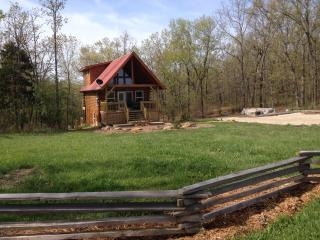 Ellen's Log Cabin with Hot Tub near Meramec River - Steelville vacation rentals