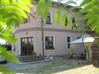 Nice Mansion  near Transfagarasan road - Curtea de Arges vacation rentals