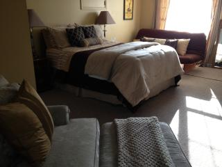 In-law Apartment, Private Locked Entrance-Parking - State College vacation rentals