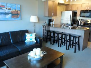 The heart of Downtown Vancouver 1br w/parking - Vancouver vacation rentals