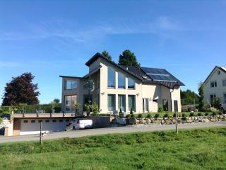 Villa luxueuse 15min Montreux (piscine + jacuzzi) - Chatel-Saint Denis vacation rentals