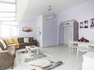129 / Lovely Top Flat at Taksim / 2BR - Istanbul vacation rentals
