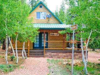 Forest Cabin - Duck Creek Village vacation rentals