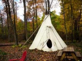 Wild Yough Glamping Campground - United States vacation rentals