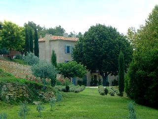 Bastide des Vignes, Sleeps 15 - La Tour d'Aigues vacation rentals
