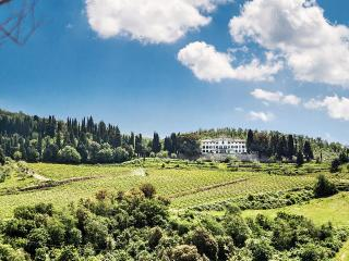 Villa Vistarenni, Sleeps 13 - Gaiole in Chianti vacation rentals
