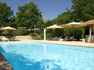 Les Cigales, Sleeps 12 - Avignon vacation rentals