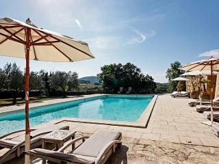 Chateau de Villedieu, Sleeps 16 - Provence vacation rentals