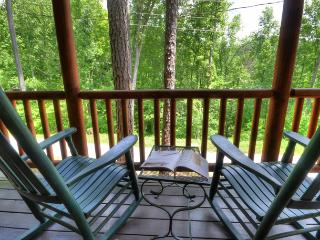 Nantahala Rafting Bear - Bryson City vacation rentals