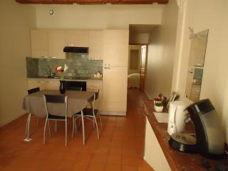 T2 downtown of carcassonne - Carcassonne vacation rentals
