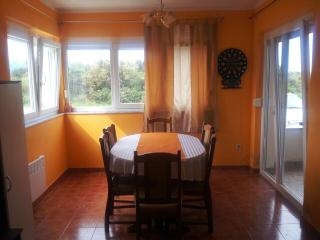 Spacious apartment for 8 people in Petrcane - Petrcane vacation rentals