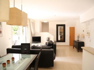 Beautiful 2 BR apartment by the sea - Herzlia vacation rentals
