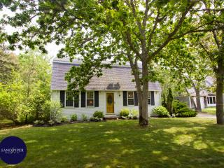 #610 A popular property with pool near South Beach - Edgartown vacation rentals